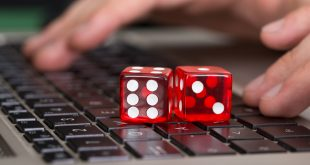Enjoy the experience of Online gambling