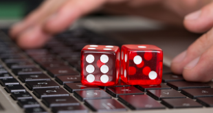 New v Established: the dilemma for online casino affiliates