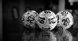 Why Bingo Rooms Are the New Online Social Clubs